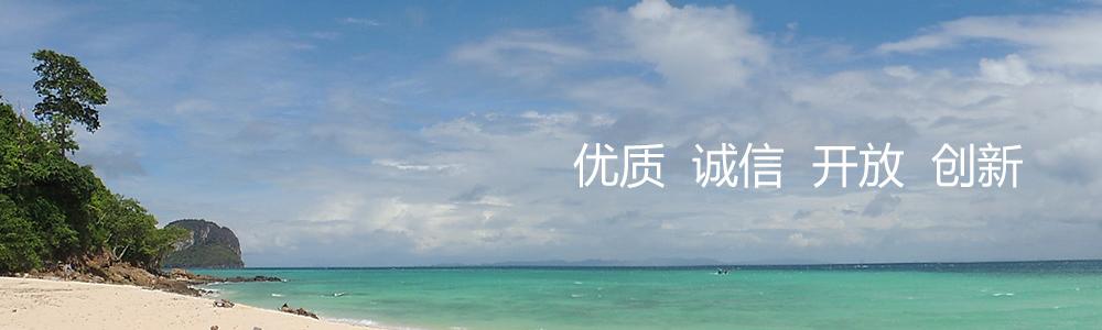 惠来新闻简介
